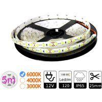 Jandei Tira LED 12V Blanco Frío 6000K 600LED Bobina 5 Metros IP65 Exterior SMD2835 Base Adhesiva De Alta Calidad 3M. Corte Cada 25 Milímetros.