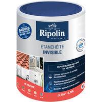 Résine Etanche Invisible, 0,75L, Ripolin - Incolore - Incolore