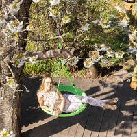 Balançoire nid d'oiseau rond 90 cm à suspendre enfant adulte jardin extérieur Ø 90 cm, 100 kg, vert