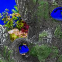 Aquarium, Formation rocheuse, Apparence naturelle, Roche déco pour terrarium, 22 cm de haut, gris-vert