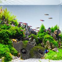 Grotte déco d'aquarium, apparence naturelle, cachette décorative, décoration en pierre, 7 x 15 cm, gris-vert