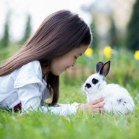 Relaxdays Free Range Pen Chickens and Rabbits, Sun Sail, Optional Sitting Rod, Big Coop, HBT 85x100x220cm, Galvanized, Silver