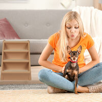 Relaxdays Dog Stairs, 4 Steps, Pets Access Ramp, Climbing Aid Bed, Sofa & Car, Max. 100 kg, 49x39x61 cm, Beige