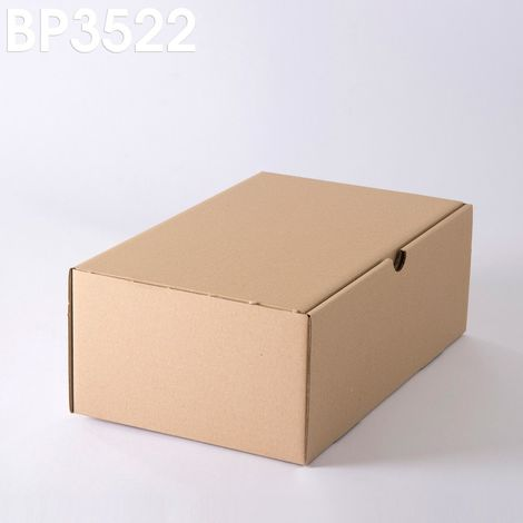 Lot de 10 Boîtes postales brunes 350x220x130 mm