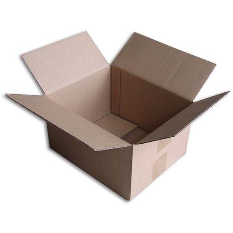Lot de 10 Boîtes carton (N°22) format 250x200x140 mm