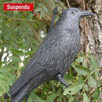Corbeau effaroucheur