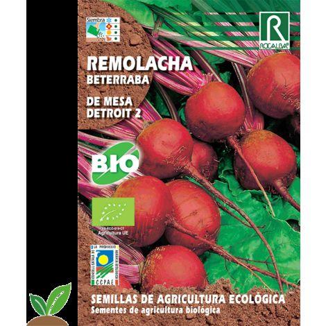 REMOLACHA DE MESA DETROIT 2 ECO