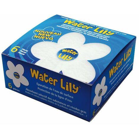 Water Lily - 6 Stück