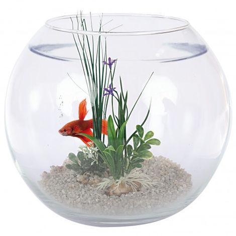 Aquarium Boule Kit Complet Zolux