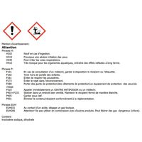Chlore choc en granulé 5 kg - 720005 - Aqua Soleil