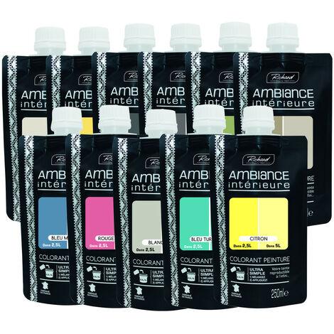 Colorant Peinture Doypack 250ml Ambiance Intérieure