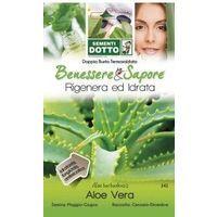 Sementi Aloe Vera