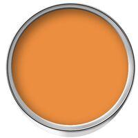 Johnstone's Professional Undercoat - Tangerine Jelly - 1ltr