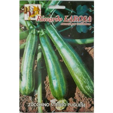 Semi di zucchino striato pugliese sigillati seme orto frutta zucchina zucchine