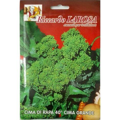 Semi orto rape cime di rapa 40/60/90/120 - fasanese - marzatica - molfettese varietà: 40° cime grande