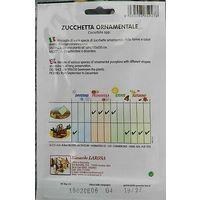 Semi di zucchetta ornamentale sigillati seme orto frutta zucchetta ornamentale