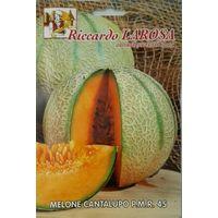 Semi di melone cantalupo buste sigillate seme orto frutta melone paglia meloni