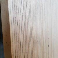 Tavola in legno microlamellare faggio 20 x 680 x 2200 mm baubuche mensolone