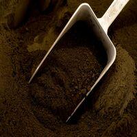 Pigment naturel pour béton et chaux:Terre d'ombre Naturelle | 500g