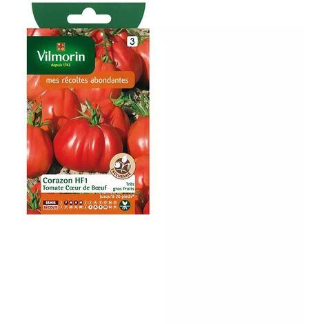 Sachet graines Tomate coeur de boeuf Corazon HF1