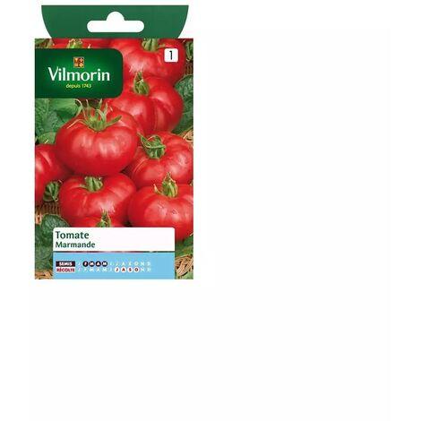 Sachet graines Tomate Marmande