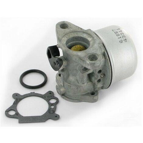 Carburateur adaptable pour Briggs Stratton remplace 799868