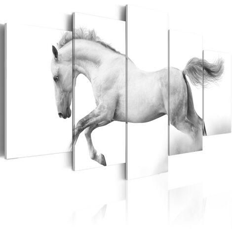 Tableau - Cheval - Passion et liberté 100x50