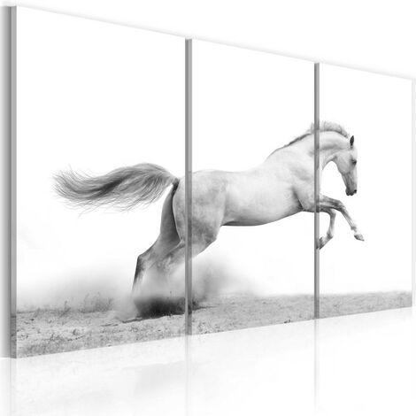 Tableau - Cheval au galop 120x80