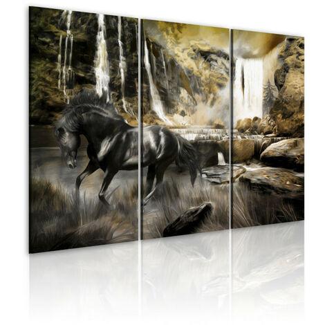 Tableau - Cheval noir et cascade rocheuse 60x40