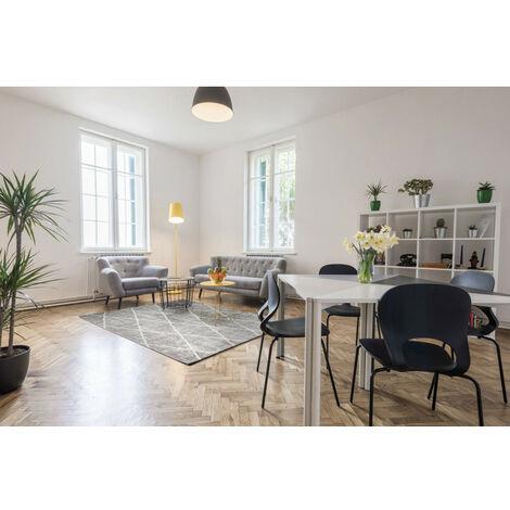 Tapis design de salon rectangle intérieur Diamo Argenté 200x300 - Argenté