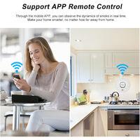 Alarme De Detection De Fumee Intelligente Tuya Wifi, Prise En Charge De La Telecommande D'Application Mobile, Modele Wifi-303