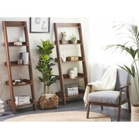 Étagères échelle en bois meuble de rangement DUO