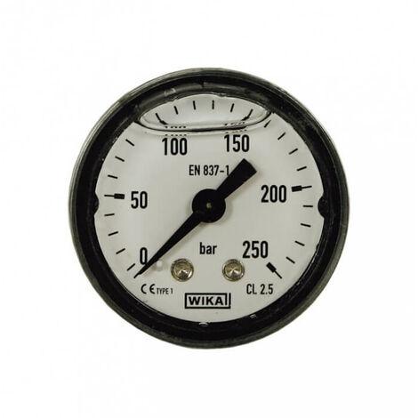 Manometre karcher 250 bar fixation axial 1/8