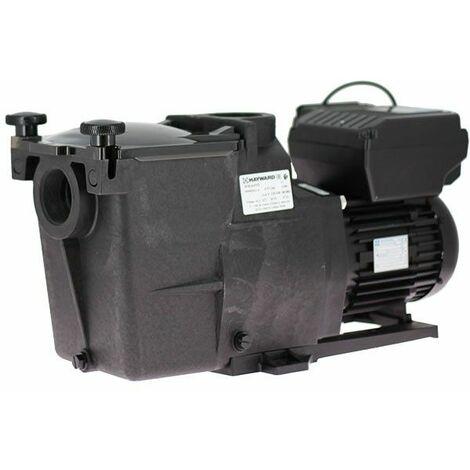 Super Pump VSTD 1,5 CV de Hayward