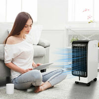 4-in-1 Air Cooler Evaporative Fan Purification Humidifier 3 Speed Remote Control