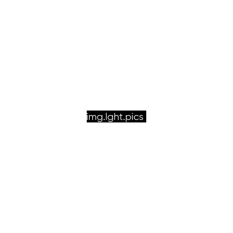 Gabion 100x20x20cm «made in Germany» - mailles carrées 10x10cm