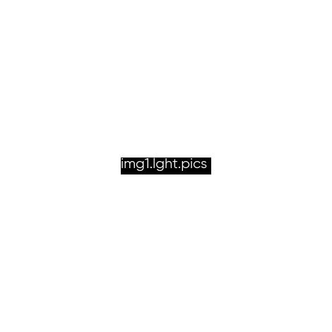Gabion 100x20x30cm «made in Germany» - mailles carrées 10x10cm