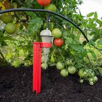 Choisir un arrosage pour plusieurs plantes aux besoins en eau différents