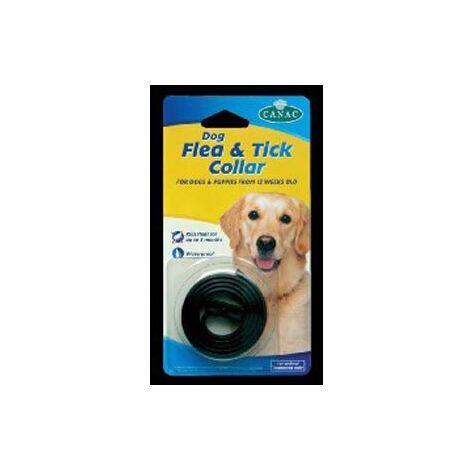Beaphar Waterproof Dog Flea and Tick Collar x 12  (23213)