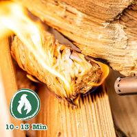 grillas Pastillas de Encendido Ecológicas Enceradas | Encendedores de Barbacoa de Madera Natural | Pastillas de Lana de Leña para Chimeneas, Estufas, Fogatas, Ahumadores (2,5 kg (200 unidades))