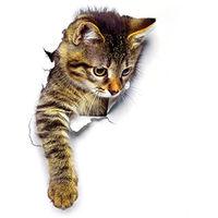 Etiqueta de la pared del gato 3D, etiqueta impermeable del inodoro,XH2003