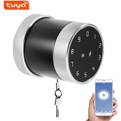 Metodo di sblocco della serratura intelligente Tuya BT: telecomando APP mobile / password / scheda / bluetooth / chiave senza impronta digitale LVD-06S-TY-argento