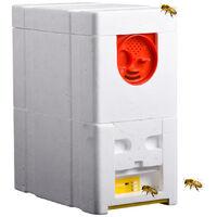 Alveari a due piani Schiuma apicoltura Casa Apicoltura Scatola di razza re Impollinazione Attrezzatura per apicoltore Strumenti per apicoltura