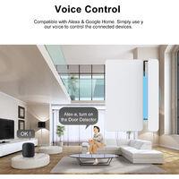 WiFi Smart Magnetischer Tur- und Fensteralarm unterstutzt Mobiltelefon APP TUYA Fernbedienung Modell: NAS-DS05W (Lieferung ohne Akku)