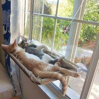 Cat Window Perch Hammock Window Mounted Cat Bed