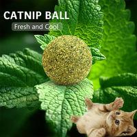 Catnip Ball Toy Cat Toy Dark green