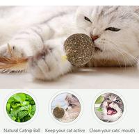 Catnip Mint Cat Ball Cat Feather Treat Ball Toy Coffee