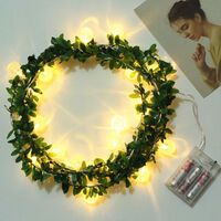 Christmas decoration 3 meters 20 lights green rattan bubble ball warm white LED string light 190908 (without battery)