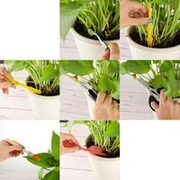 13 pieces of succulent potted plants with storage bag gardening tool set