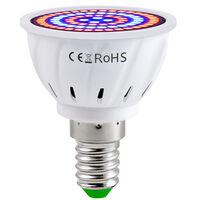 LED Grow Light Bulb for Indoor Plants Red & Blue Spectrum LED Plant Light Bulbs E14 Growing Lamp for Seedlings Hydroponic Succulent Flowers Veg Greenhouse (220V),model: E14 & 80 LEDs